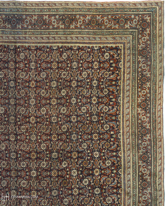 09009 Agra | FJ Hakimian